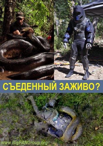 Discovery: ��������� ������? / Anaconda: Eaten Alive? (2014) SATRip by vn_tuzhilin